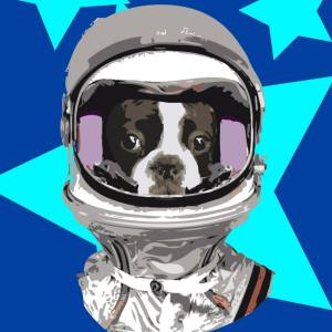 #2 french bulldog in vintage astronaut helmet